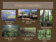 Forest+communities+_Parts+1+and+2_+Smartsite+version