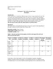The Cell Cycle and Cancer Worksheet  sofia navas y paula quintero-2.doc