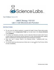 umuc biol 103 lab Title: umuc biology 102103 lab 6 taxonomy, author: umucbiology102ft, name: umuc biology 102/103 lab 6: taxonomy click below link to purchase.