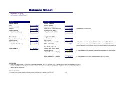 Assignment #6 - Balance Sheet