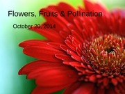 Oct 20 - Flowers, Fruits & Pollination (1)