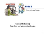 Lecture15-Unit5-Secretion - 2014W LC