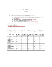 The Cell Cycle and Cancer Worksheet.doc