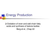 T2.7_Energy_Production-Beta-oxidation_of_fatty acids,+etc