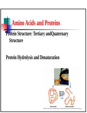 Structure of Protein (Tertiary and Quaternary)