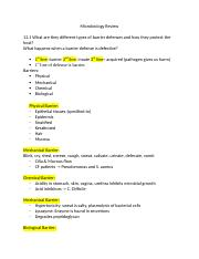 Microbiology Study Guide .docx