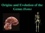 Anthro Power POint Early Homo Students