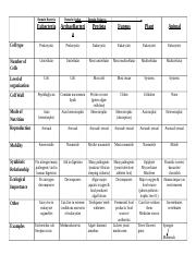 1 Pages Kingdom Chart