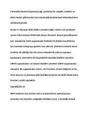 turkish_001740.docx