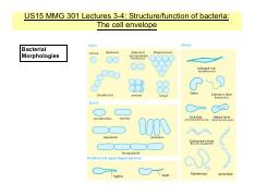 US15Lec3_4 Cell envelope