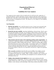 Guidelines for Case Analysis