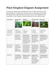 6.05 plants biology.pdf - Plant Kingdom Diagram Assignment ...