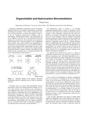 bioremediation template paper chem1