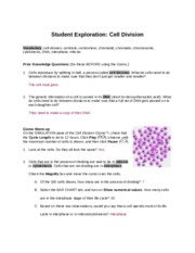 math worksheet : 3 1 celldivision 1  student exploration cell division  : Cell Division Worksheet Answers