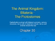 chapter30%20-%20proteostomes%20Spring%202008%20_1_