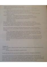 gene expression study guide