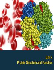 Unit-4-Protein-Structure-and-Function.pdf
