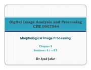 11_Chapter_9_Morphological_Processing