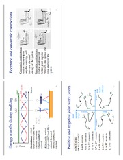 lecture_16_dynamics_review12
