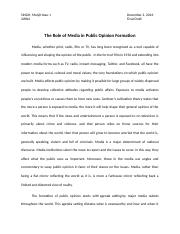 The Role of Media in Public Opinion Formation