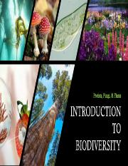 Diversity of life - Protists, Fungi, Plants.pdf