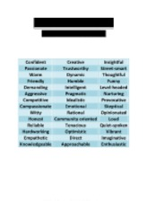 Brand Personality Descriptors - 42 x Possible Options