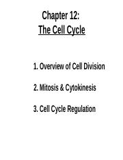 Lecturesevencellcycle.pptx