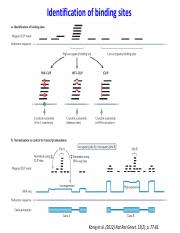 RNA Binding Proteins Introduction25.pdf
