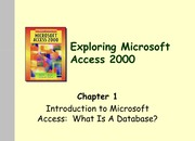 Access Chapter 1 - Intro to Microsoft Access - Notes