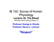 Lecture_16r_The Blood