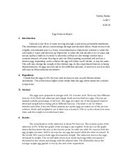 Lab Report .docx - Measuring the Rate of Osmosis Using ...