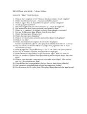 Algae Study Questions.doc
