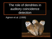 Role of Dendrites in Auditory Coincidence Detection