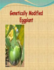 Lec 08 - Genetically Modified Eggplant.ppt
