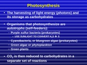 09-9 Photosynthesis bw