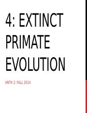 4 Extinct Primate evolution for TED.pptx