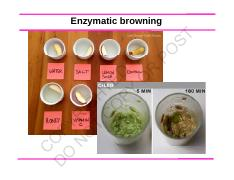 2017 updated enzymatic browning