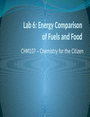 Energy Comparison of Fuels and Foods
