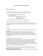 muscular_and_skeletal_system_worksheet_final.docx