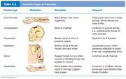 L4_table_05_2_Bone_Fractures