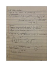 photosynthesis and chromatography lab notes