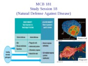 Session 18 (Natural Defense against Disease)