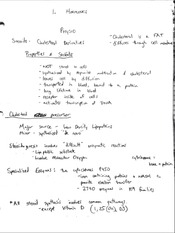 Physiology - Exam 1 - Class Notes