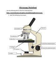 Microscopy Worksheet Microscopy Worksheet Use The Following Link