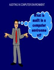 Auditing in CIS Environment.pdf