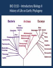 History of Life on Earth; Phylogeny