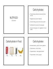 Which Nutrients Foods and Dietary Patterns are Best for Our Health lecture slides.pdf