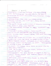 Film chapter 2  notes