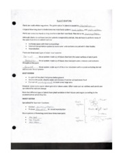 Plant Systems Worksheet