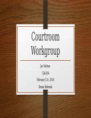Courtroom Workgroup_Week3